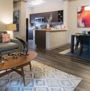 Griffis Lakeline Station Apartment Homes Living Area