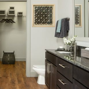 Bathroom with Walk-In Closet Access at Griffis North Union Apartment Homes