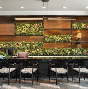 Griffis Cherry Creek Renovated Leasing Center with Living Wall Art
