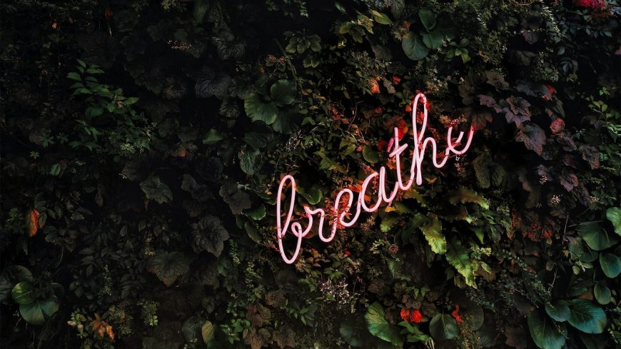 Griffis Residfential Blog Image Breathe neon sign on foliage 1920x1080