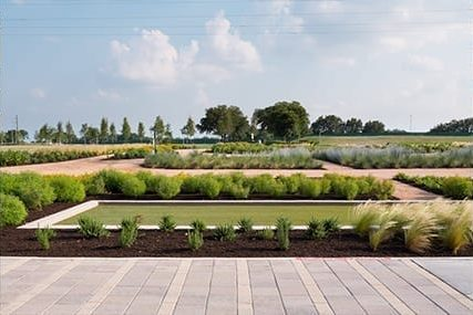 outdoor community planter area with a maze of organized bushes and flora surrounding a dirt walking path